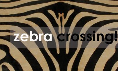 Zebra Crossing! Get The Latest Interior Look