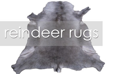 Reindeer Hides – The Latest Home Decor Accent Piece