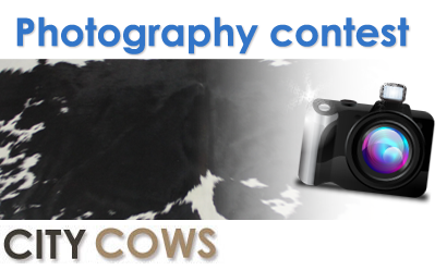 Enter Our Photography Contest For Your Chance To Win £150 And A Cowhide Rug!